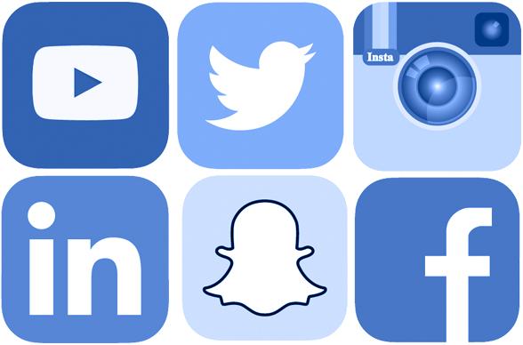 Organic Visibility Social Media Gallery
